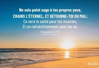 Proverbes 3:7-8